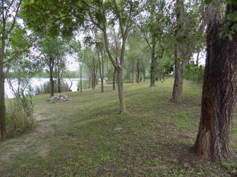 jezero Čepel Zrenjanin slika 1