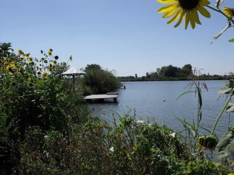 jezero-mika-alas-beograd-slika5