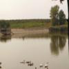 conopljansko-jezero-conoplja-2
