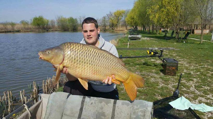 jezero-backi-jarak-big-carp