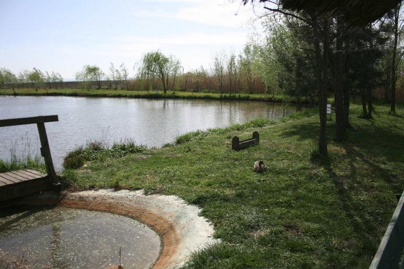 jezero-backi-jarak-obala