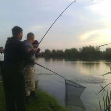 jezero-backi-jarak-pecarosi-riba