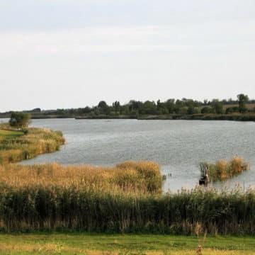 jezero-stara-moravica