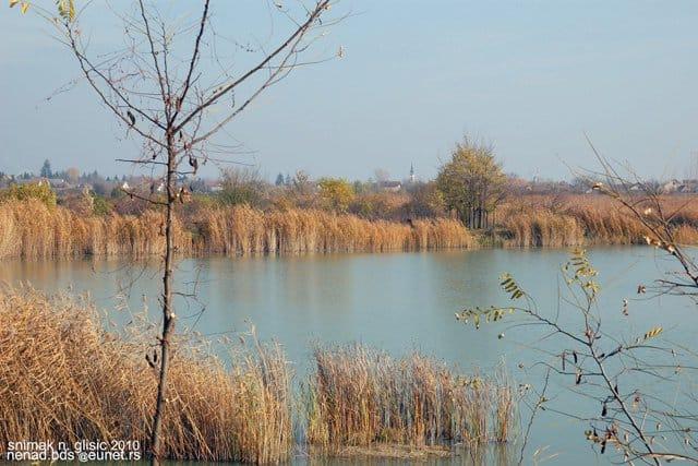 zmajevacka-jezera-priroda